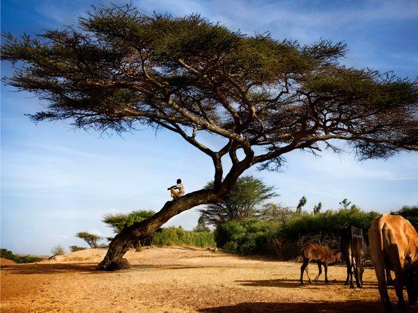 efiopiya Иммиграция в Эфиопию