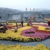 Пекин — Ботанический сад.