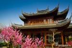 Весна в Китае