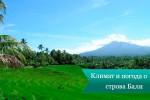 Климат и погода острова Бали
