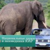 Национальные парки и заповедники ЮАР
