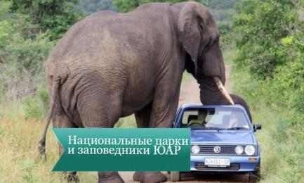 nac park uar 433x260 Национальные парки и заповедники ЮАР