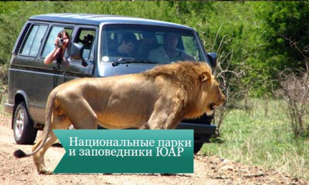 nac park uar2 433x260 Национальные парки и заповедники ЮАР
