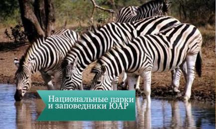 nac park uar3 433x260 Национальные парки и заповедники ЮАР