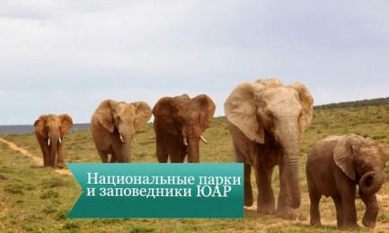nac park uar4 433x260 Национальные парки и заповедники ЮАР