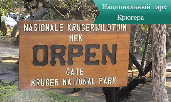 park krugera Национальный парк Крюгера